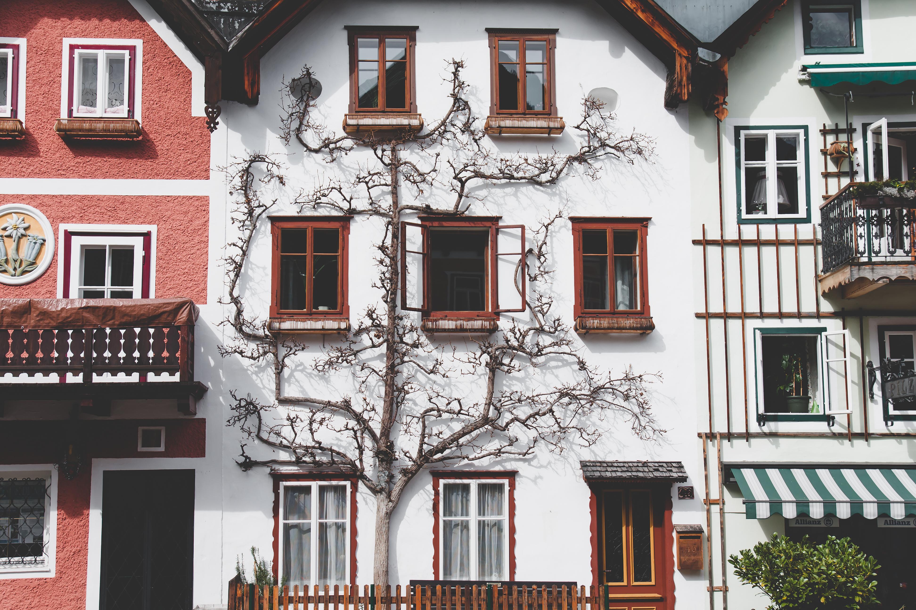Gebrauchtimmobilie oder Neubau? In vielen Fällen ist der Altbau lukraziver.